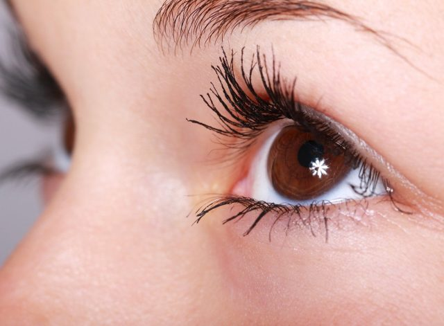 lashes irpr web design