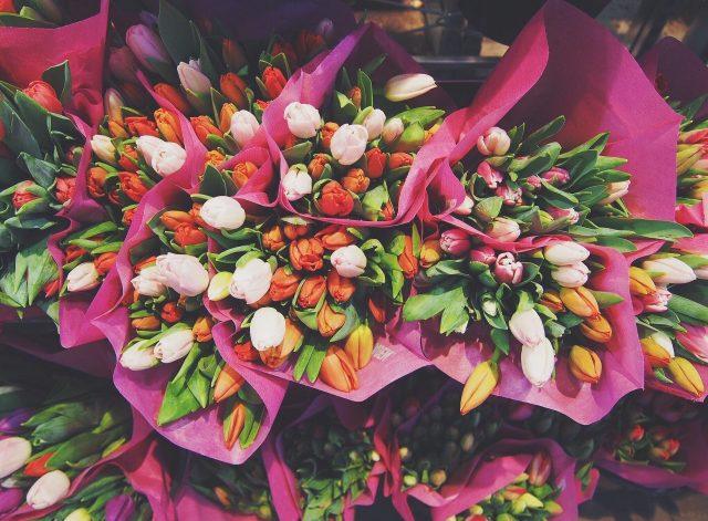 irpr florist google 360